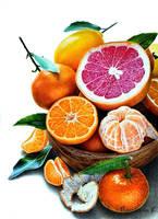 Mandarins by PutyatinaEkaterina