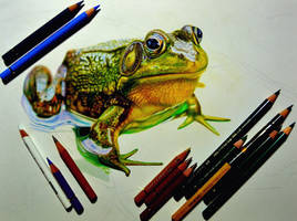 The process of drawing