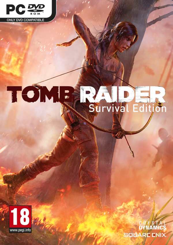 tomb raider 2013 pc fan made box art by mikky100 on