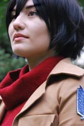 Mikasa Ackerman by dangerousladies