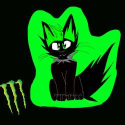Monster energy cat