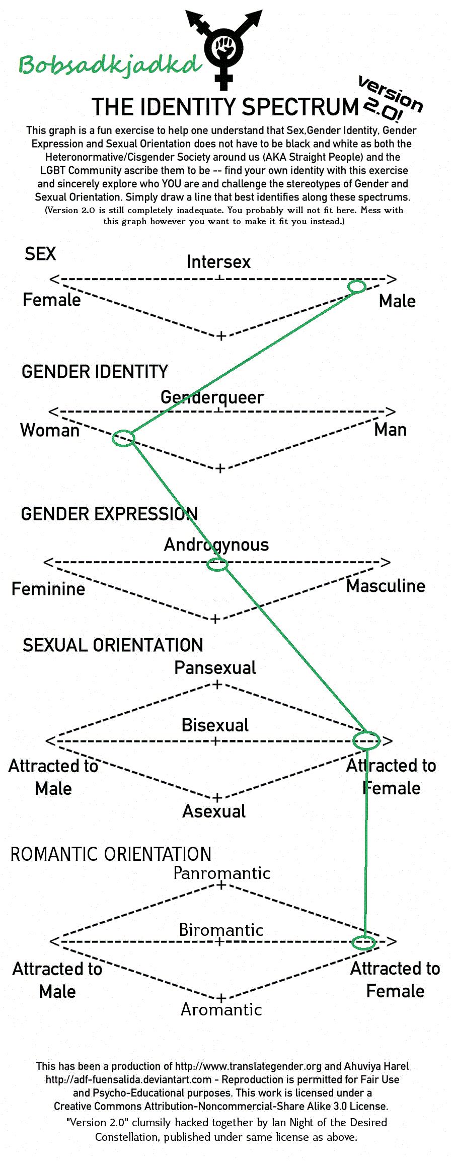My Gender Ideny Chart By Bobsadkjadkd