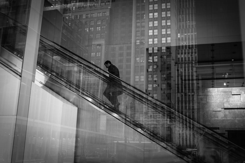 Career Ladder by IrynaFedorovska
