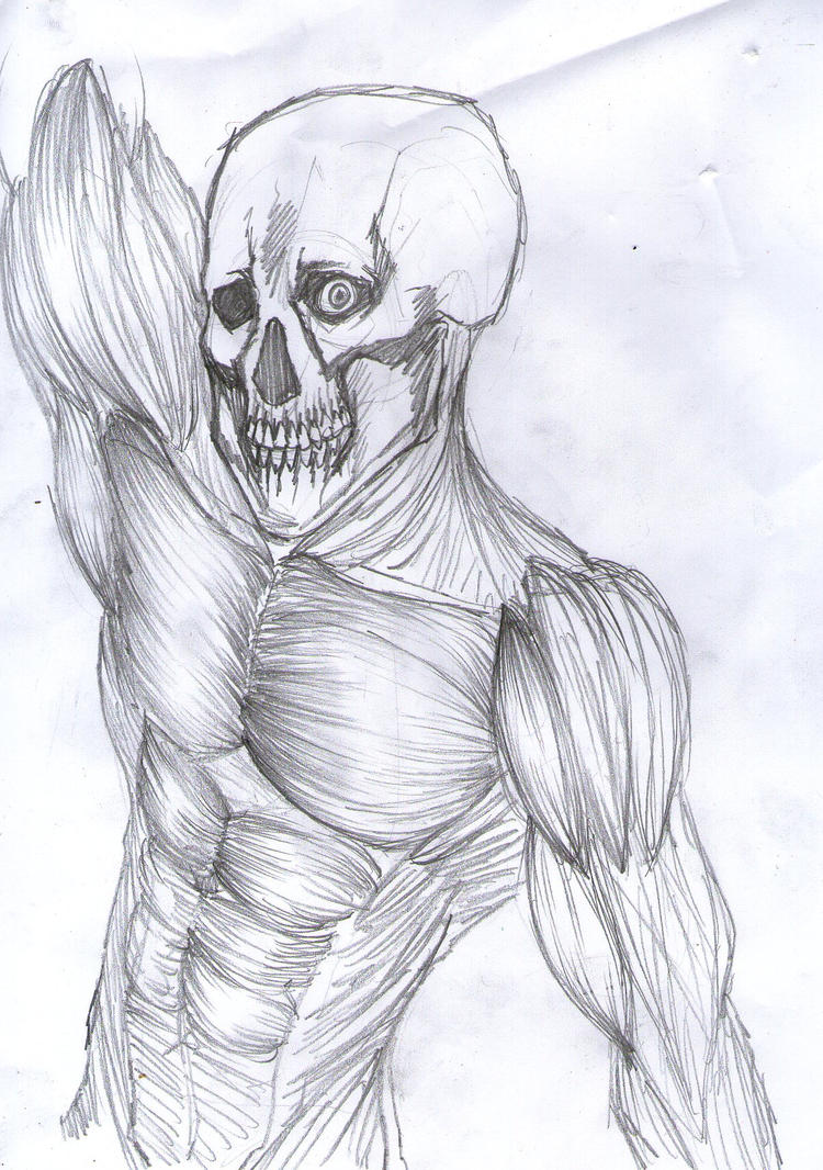 old anatomy study by ilyesgnei