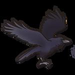 Shop Item: Raven by DrakehestCouncil
