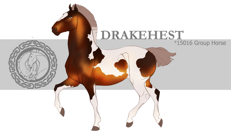 Drakehest Group Horse 15016