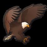 Shop Item: Eagle