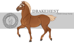 Drakehest Group Horse 15028 by DrakehestCouncil