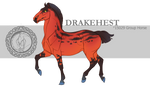 Drakehest Group Horse 15029 by DrakehestCouncil