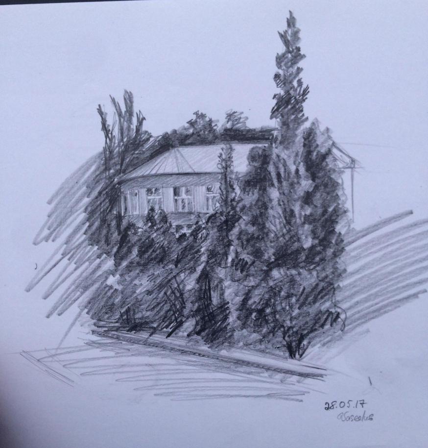 House  by Vaseelus