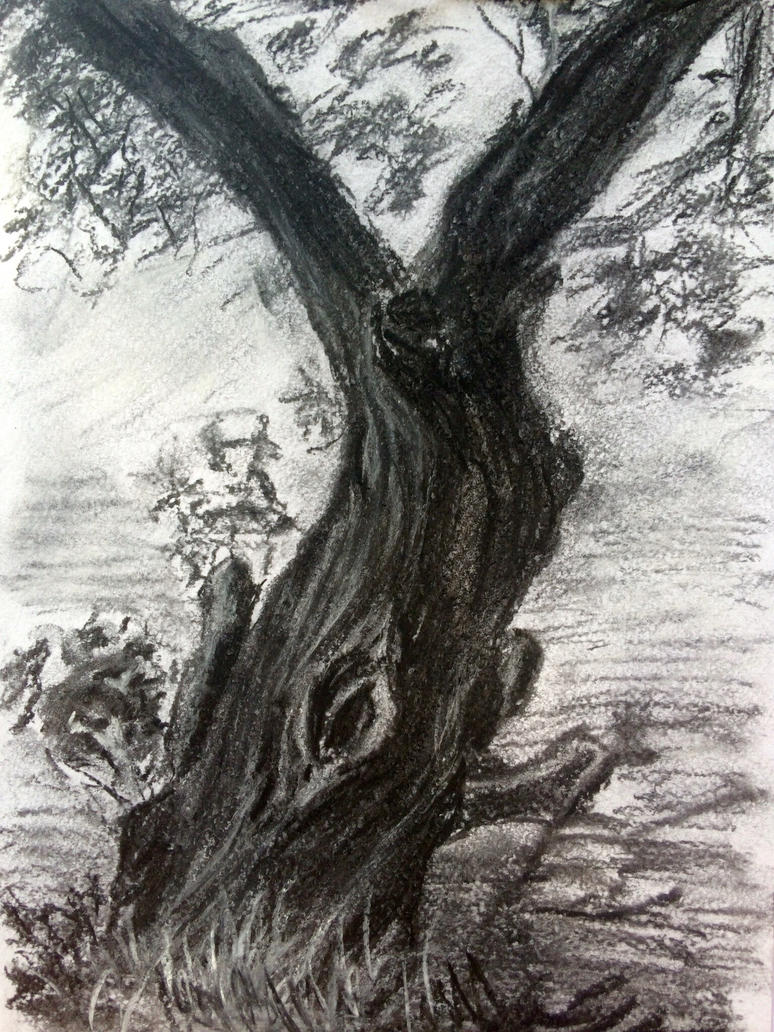 Tree  by Vaseelus