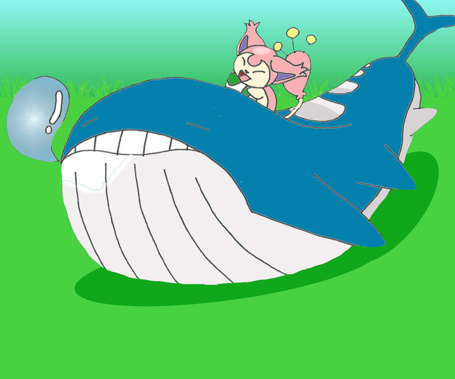 Wailord and skitty by scryied - Wailord pokemon x ...