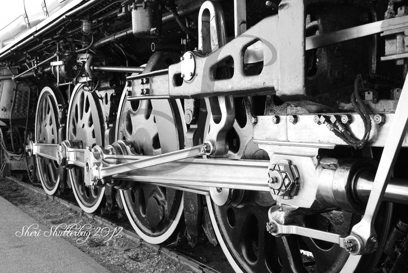 Steam Locomotive No. 844 VI by Scooby777