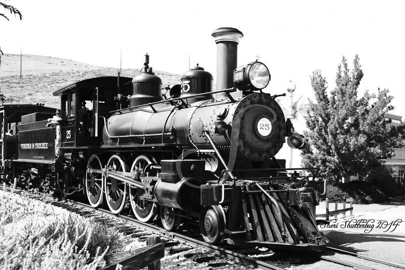 Steam Locomotive No. 25 II by Scooby777