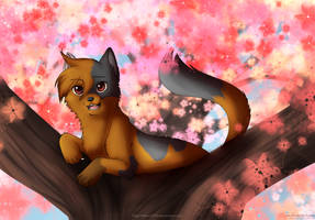 Commission - Within Sakura by hikari2314