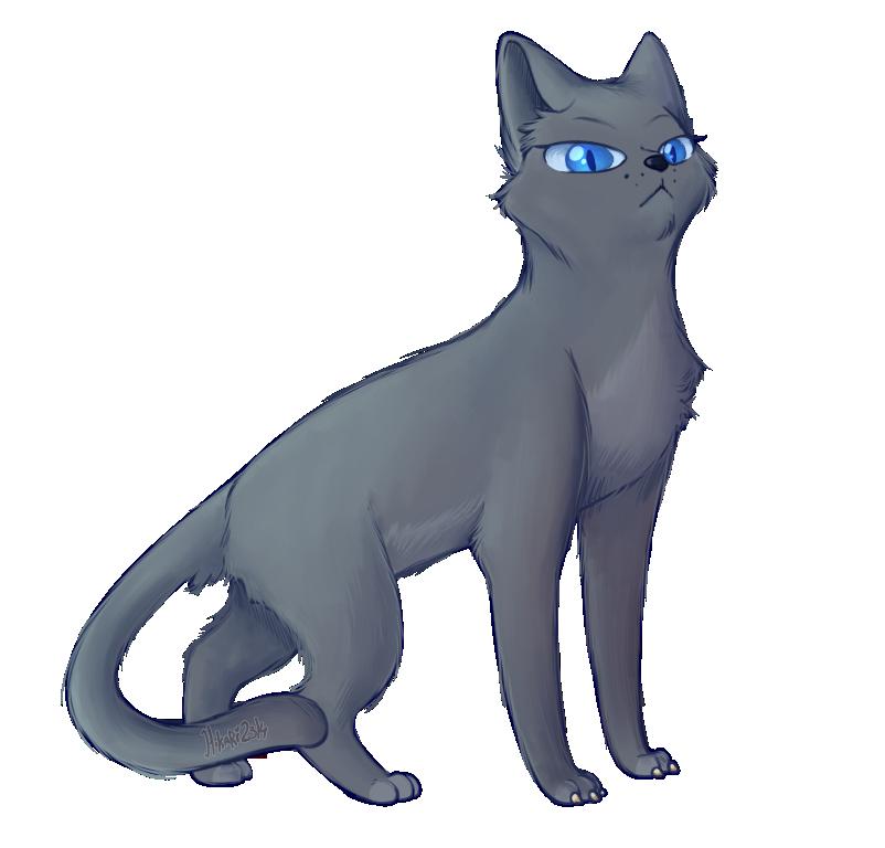 Bluestar: Let all those old enough... by hikari2314 on ... Warrior Cat Drawings Bluestar