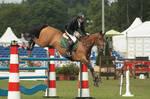 Jumping stock 157