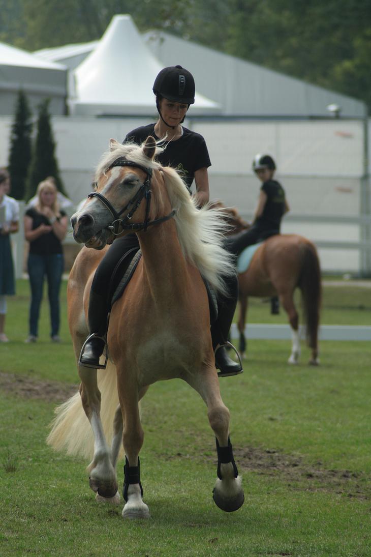 Pony soccer stock 8 by Bundy-Stock