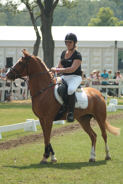 Pony soccer stock 13