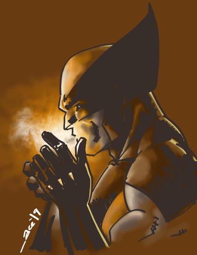 Wolverine by acenriquez