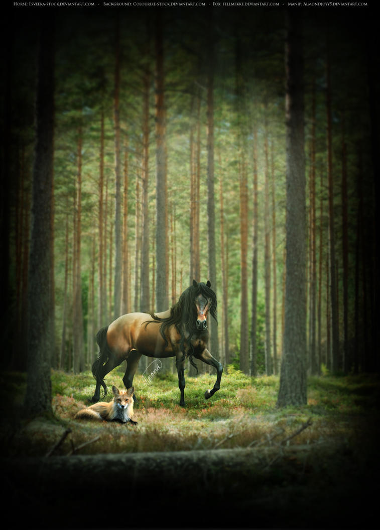 Serenity by almondjoyy5
