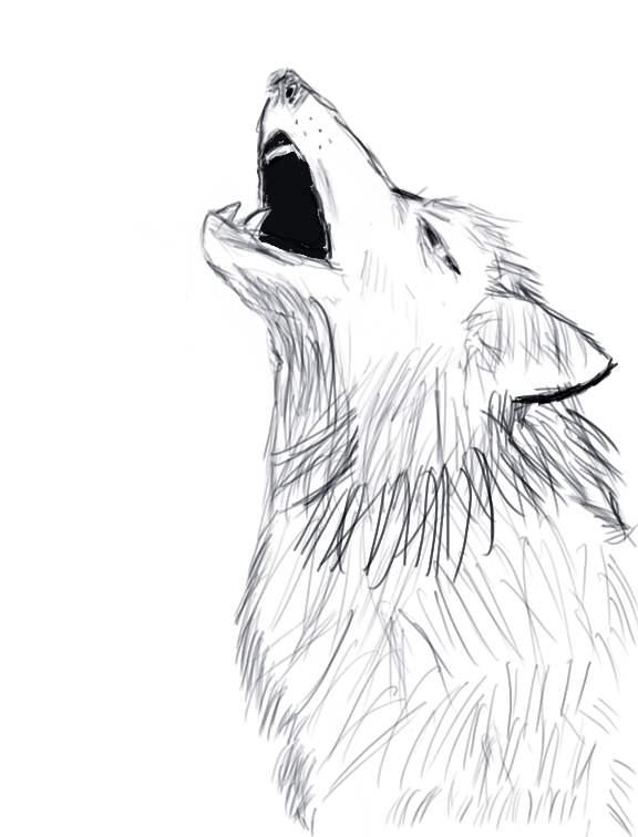 Зентангл картинки для срисовки легкие воющий волк