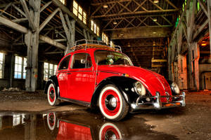 Volkswagen Bug 1 by Vidiphoto