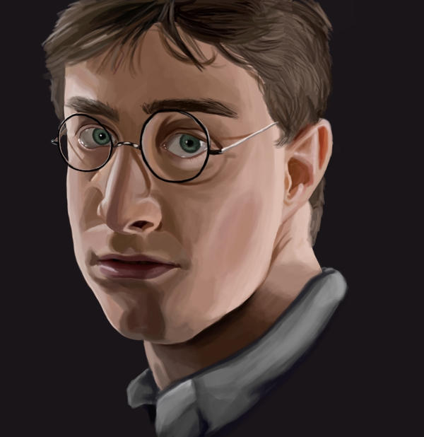 Harry Potter - Book 6 by picklelova