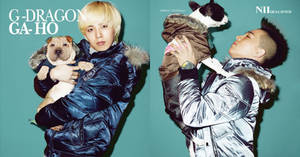 GD-GaHo-TaeYang and Boss