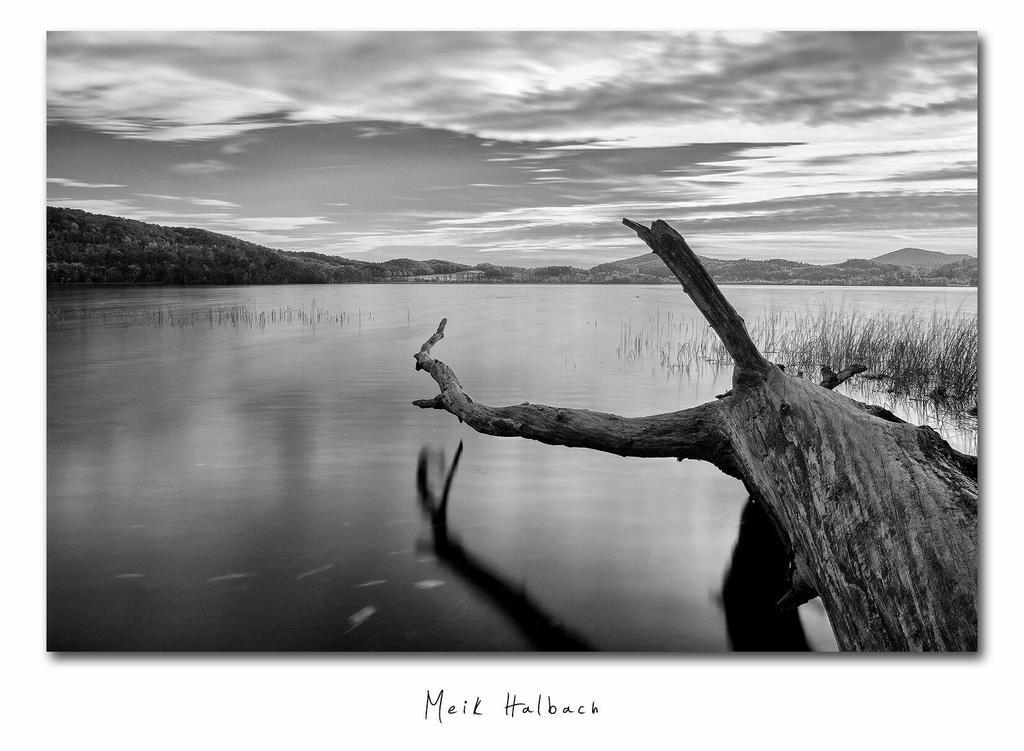 Lake by MrMeik