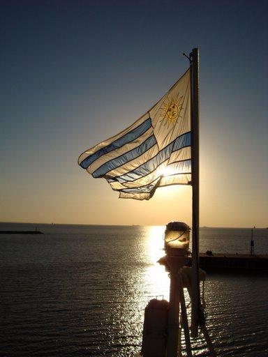 bandera uruguaya ' by srfede