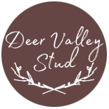 Stable Logo by DeerValleyStud