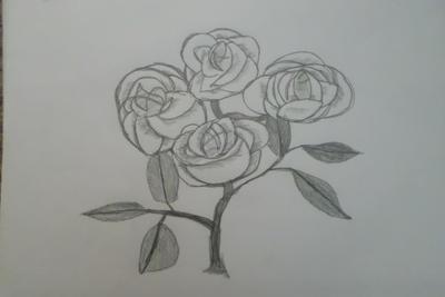 Flowers by Carolinagirl203