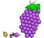Grape? by KinnisonArc
