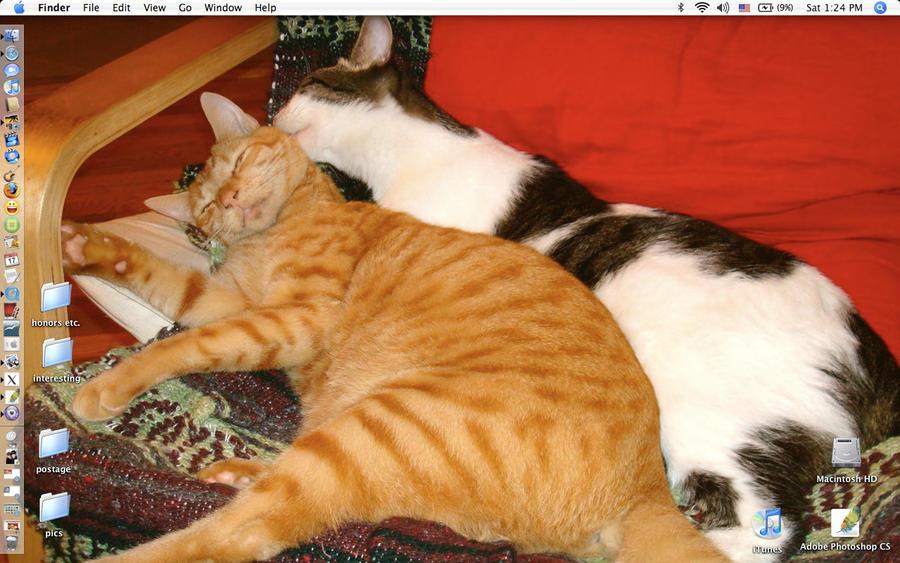Screenshot: Casey and Mango