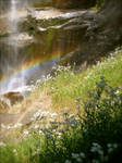 Rainbow by daisysunshineyay