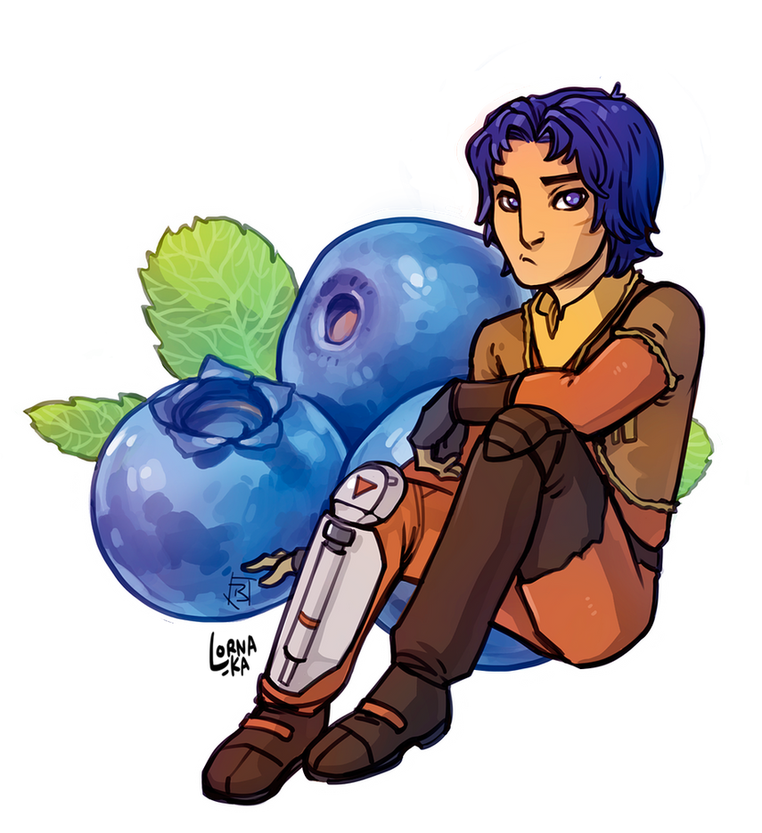 SWR Ezra 'Blueberry' Bridger by lorna-ka
