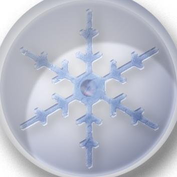 Preserved Snowflake by YinxAngelxYang