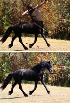 Centaur Attack
