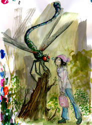 The Girl and the Dragonfly