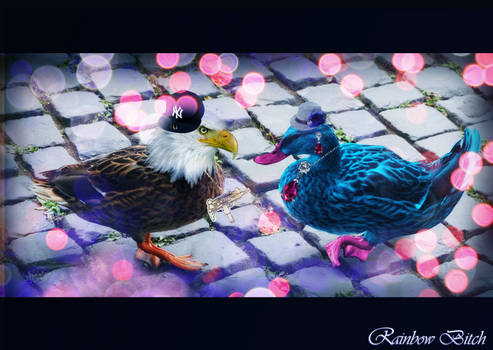 Duck Bitches