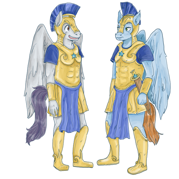 Commission- royal guards by superlucky13