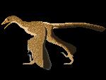 Archaeopteryx by munkas02