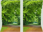 Stereo Cross View of a park 3D