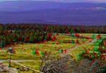 Nationalpark Harz ::: Dubois-Anaglyph HDR 3D