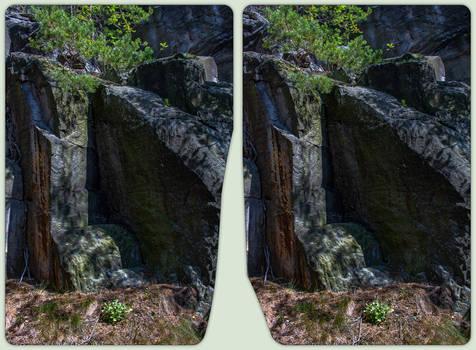 Random outdoor toolmarks 3-D / CrossView
