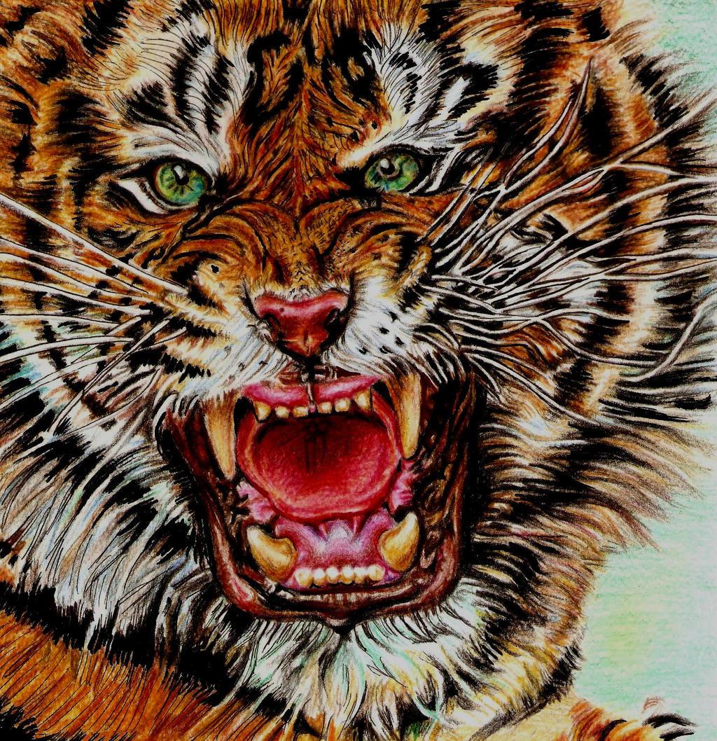 Wild by Fajralam