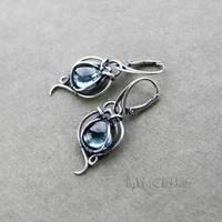 Blue Iris by taniri