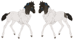 8860 | Foal Design by RedRobinEC