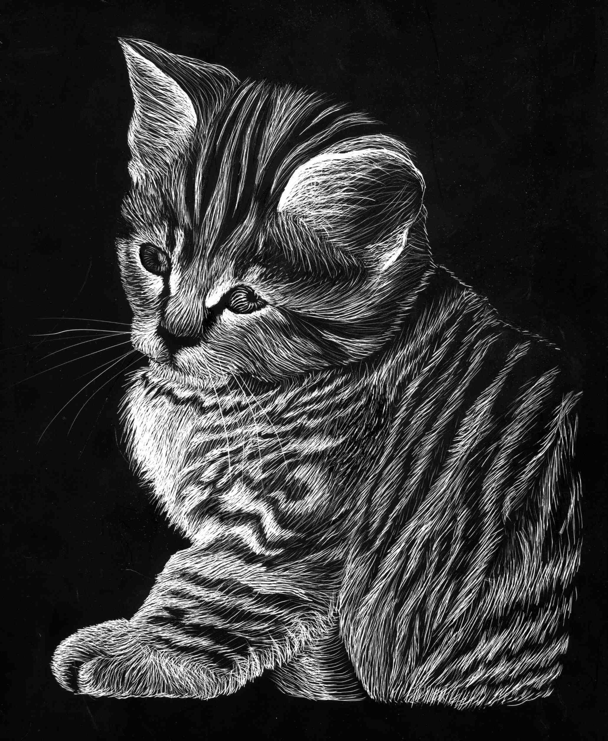 CheshireINwonderland Scratch Board Kitty Cat By